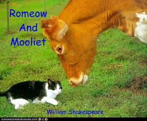 Romeow And Mooliet