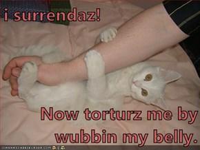 i surrendaz!  Now torturz me by wubbin my belly.