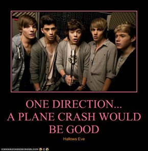 ONE DIRECTION... A PLANE CRASH WOULD BE GOOD