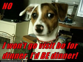 NO  I won't go visit bo for dinner. I'd BE dinner!