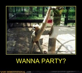 WANNA PARTY?