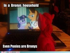 Even Ponies...