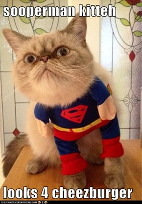 sooperman kitteh  looks 4 cheezburger