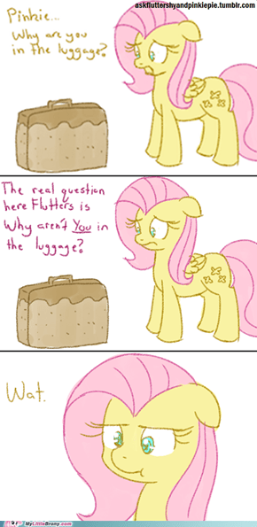 Pinkie pie is luggage
