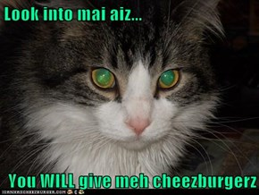 Look into mai aiz...  You WILL give meh cheezburgerz