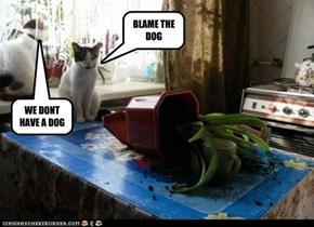 BLAME THE DOG