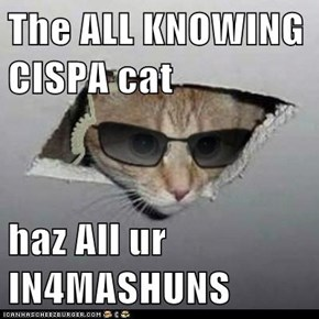 The ALL KNOWING CISPA cat  haz All ur IN4MASHUNS