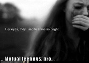 .. Mutual feelings, bro...