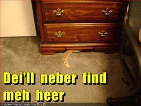 Dei'll  neber  find  meh  heer