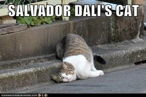 Lolcats: SALVADOR DALI'S CAT