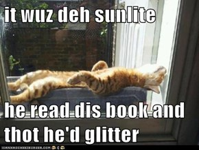 it wuz deh sunlite  he read dis book and thot he'd glitter