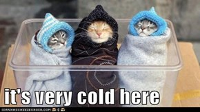 it's very cold here