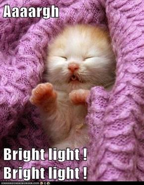 Aaaargh  Bright light !      Bright light !