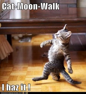 Cat-Moon-Walk  I haz it !