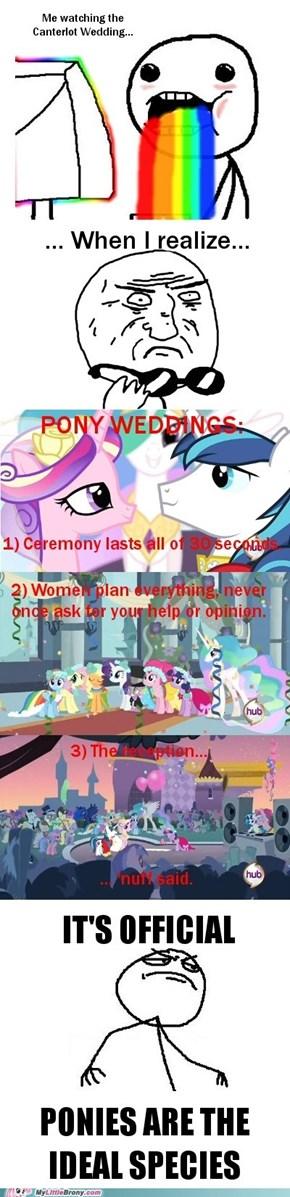 Pony Weddings Are Best Weddings