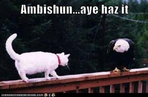 Ambishun...aye haz it