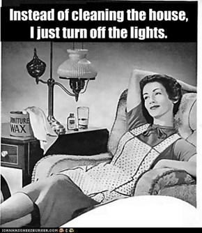 Instead of cleaning the house,  I just turn off the lights.