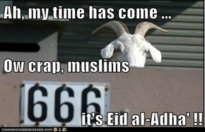 Ah, my time has come ... Ow crap, muslims it's Eid al-Adha' !!