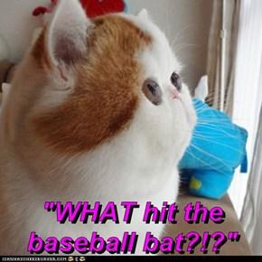 """WHAT hit the baseball bat?!?"""