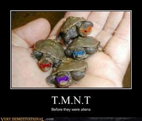 T.M.N.T