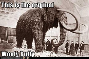 This is the original  Wooly Bully