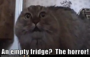 An empty fridge?  The horror!