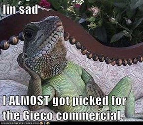 Im sad  I ALMOST got picked for the Gieco commercial