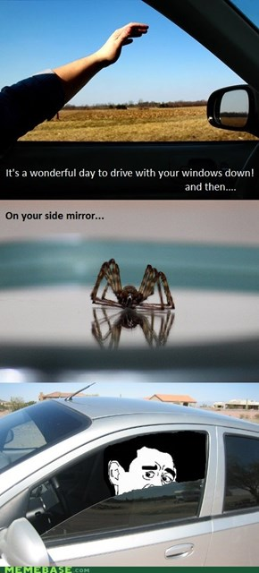 Just be lucky it wasn't on the rear-view mirror.