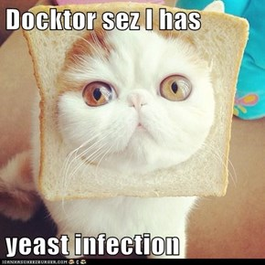Docktor sez I has   yeast infection
