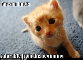 Puss in boots  Adorable from the beginning