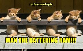 cat flap closed again.
