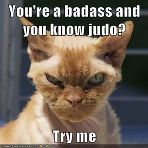 You're a badass and you know judo?  Try me