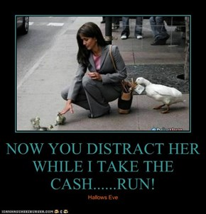 NOW YOU DISTRACT HER WHILE I TAKE THE CASH......RUN!