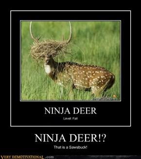 NINJA DEER!?