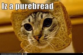 Iz a purebread