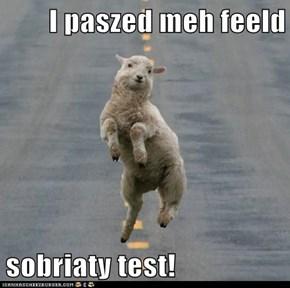 I paszed meh feeld   sobriaty test!