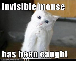 invisible mouse  has been caught