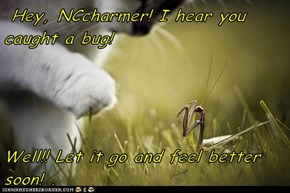 Hey, NCcharmer! I hear you caught a bug!   Well!! Let it go and feel better soon! .