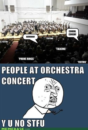 Y U No Obey Concert Laws