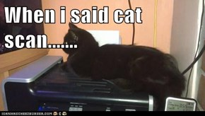 When i said cat scan.......