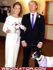 Dog Snoopy is best man at Sue and Michael Hopkins' Swansea church wedding