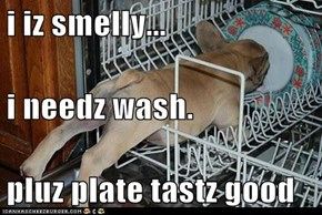 i iz smelly... i needz wash. pluz plate tastz good