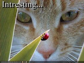 Intresting...