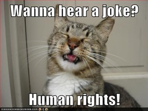 Wanna hear a joke?  Human rights!