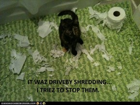 Lolcats: Driveby Shredding