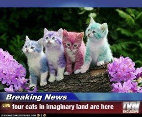Breaking News - four cats in imaginary land are here