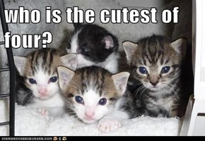 who is the cutest of four?