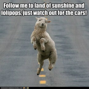 Follow me to land of sunshine and lolipops, just watch out for the cars!