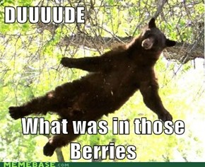 Must have eaten unripened mulberries