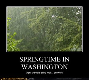 SPRINGTIME IN WASHINGTON